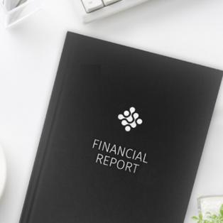 fin report